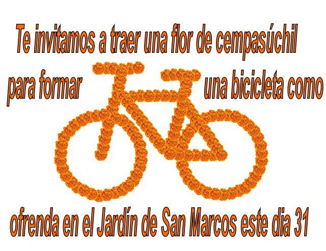 bici cempasuchi.jpg